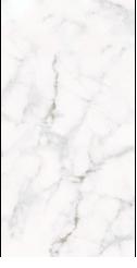 Calacatta White Tile 30,7x61,5cm